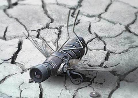 Manipulación fotográfica