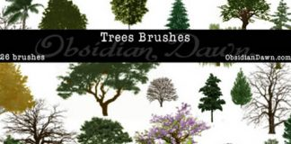 nature brush