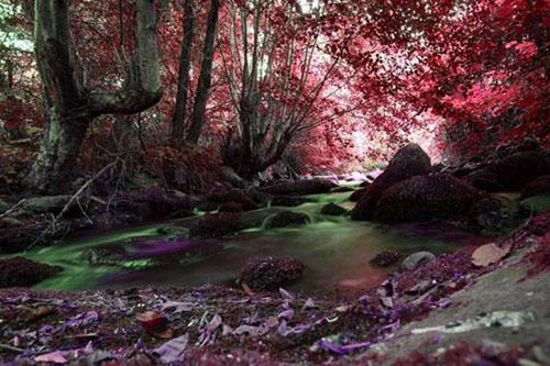 Fotografías Impresionantes De La Naturaleza Del Fotógrafo: 28 Impresionantes Fotografías De La Naturaleza