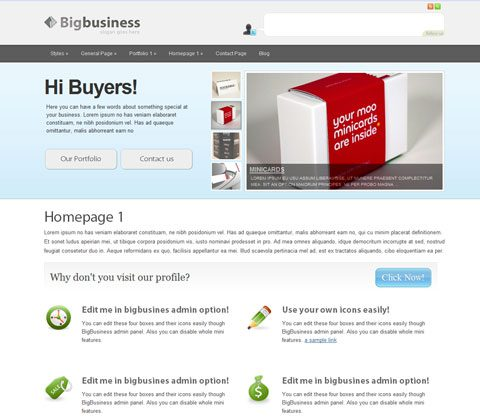 bigbusiness theme premium wordpress