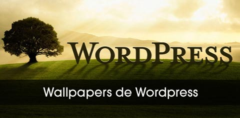 wallpapers de wordpress