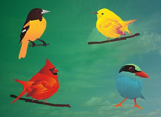 Hermosos pájaros vectorizados - PuertoPixel.com
