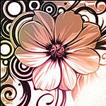 100 brushes de gran calidad -  Vector flowers brushes