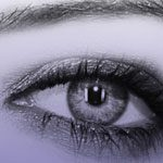100 brushes de gran calidad -  Eyes brushes
