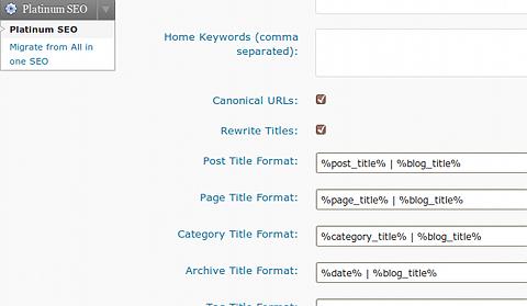 top 20 plugins SEO para wordpress - platinum-seo-options-page