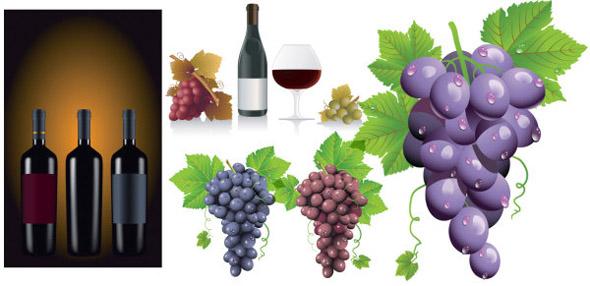 botellas, copas, uvas vectorizadas