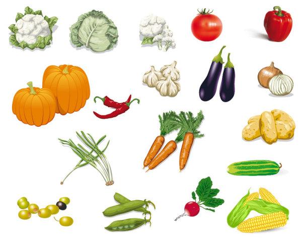 Mas de 40 frutas verduras y hortalizas vectorizadas for Plantas hortalizas ejemplos