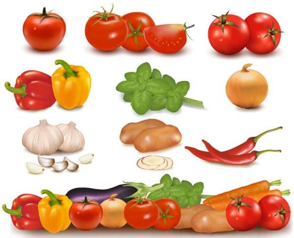 Name Verdura: Mas De 40 Frutas, Verduras Y Hortalizas Vectorizadas